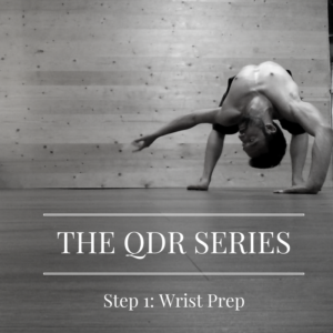 the-qdr-series-1
